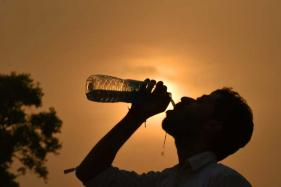 July Ranks 2nd for Heat Globally, Hottest Recorded on Land
