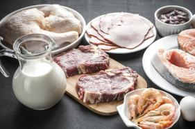 Tips to Keep Your Protein Intake in Check