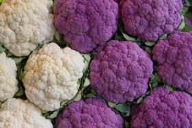 Hues Of Purple On Your Plate For Healthy Life