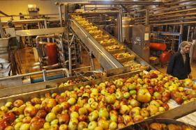 India Seeks Partnering With American Food Processing Companies