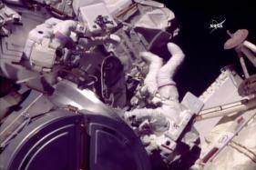 Spacewalking Astronauts Grease Robot Arm's New Hand