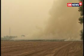 Watch: Delhi's Air Quality Worsening Due to Stubble Burning by Punjab, Haryana