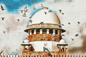 Pointing Out Unauthorised Constructions, SC Says Delhi Being Ravaged by its Citizens, Officials