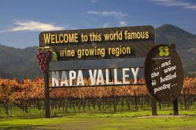 French Luxury Group LVMH Adds Californian Vineyard to Its List of Labels