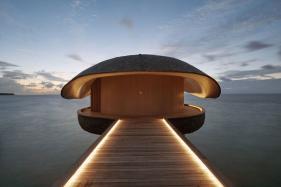 Whale-shaped Bar in The Maldives Wins International Design Award