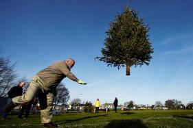 In Pictures: Christmas Tree Throwing Competition