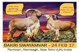 Priyanka, Katrina and Deepika To Wed This Mahashivratri