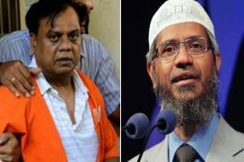 Zakir Naik Had Dealings With Builder Linked to Chota Rajan, Says NIA
