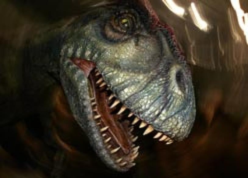 New carnivorous dinosaurs identified in Sahara