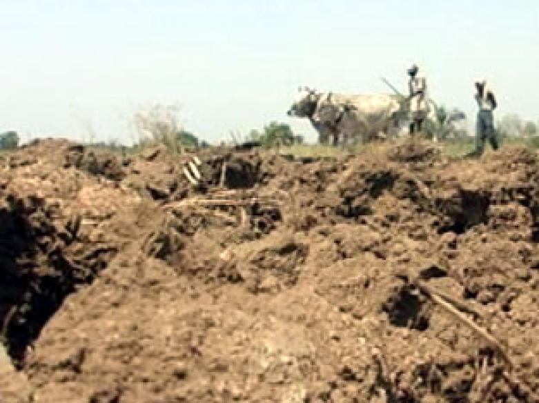 Maharashtra waives off Rs 6,208 cr farmer loans
