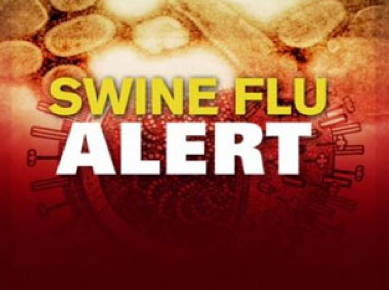 All suspected swine flu cases in India test negative