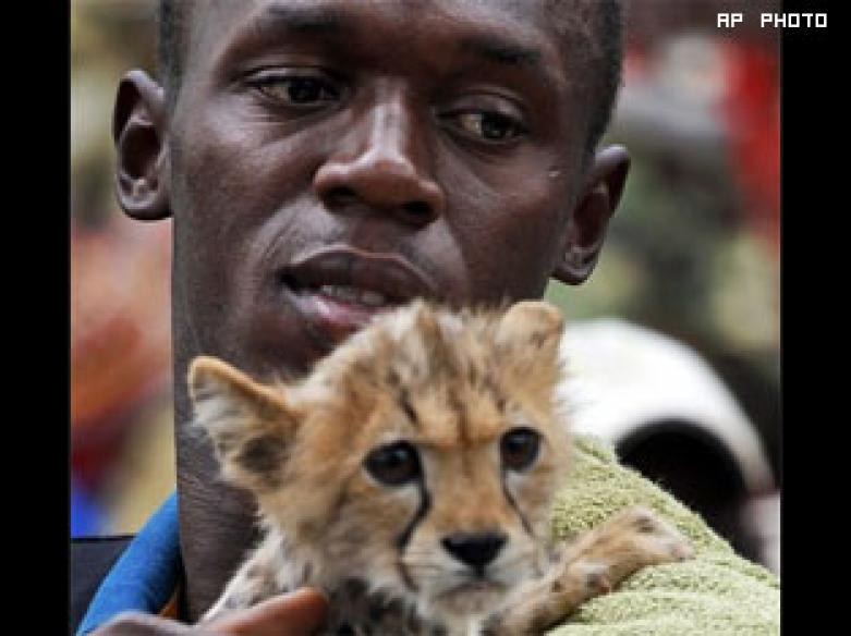 World's fastest man Usain Bolt adopts cheetah