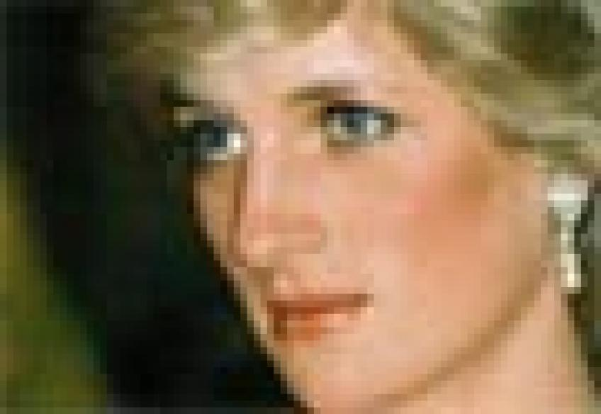 Diana 'killed for trying to expose UK arms dealers'