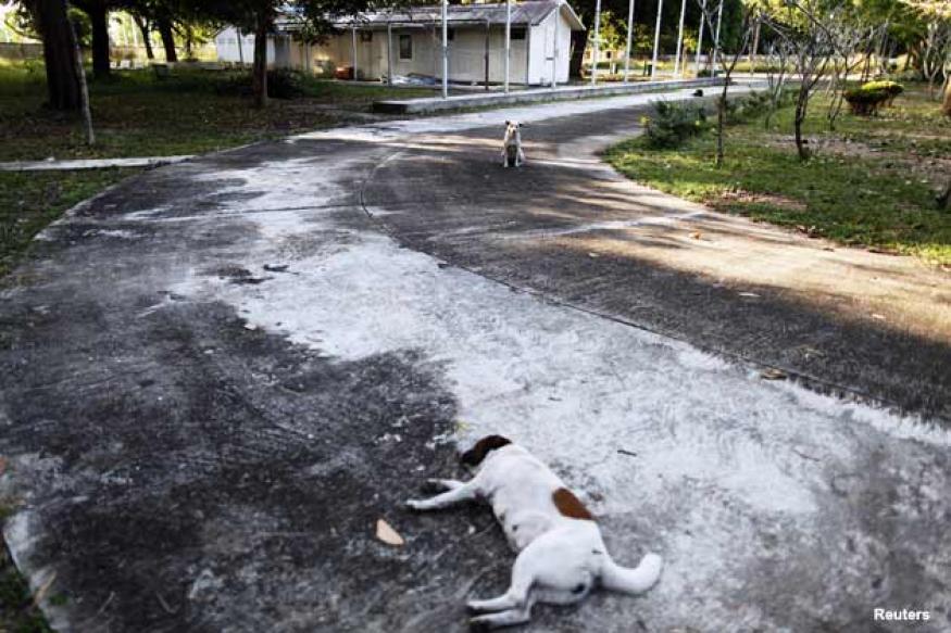 Magnitude 5 earthquake jolts Andaman and Nicobar