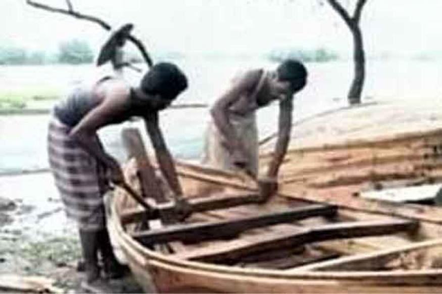 Extending power grid in Sundarbans risky: Experts