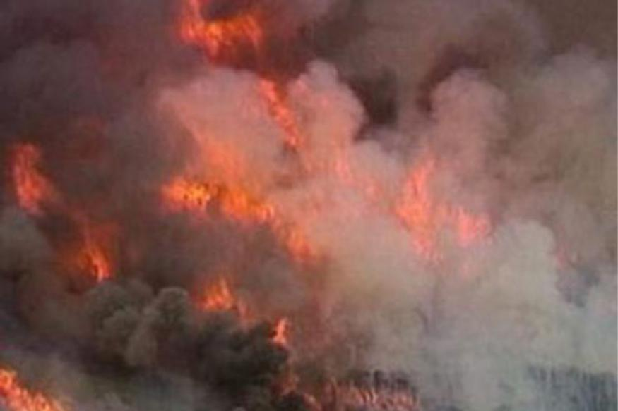 J&K: Forest fire in Dachigam National Park