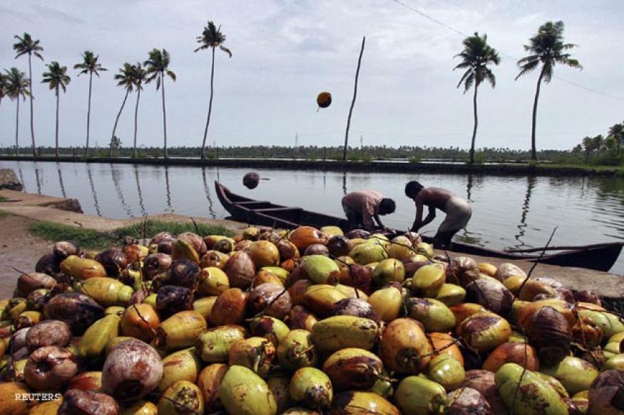 Kerala man makes coconut plucking a hi-tech job