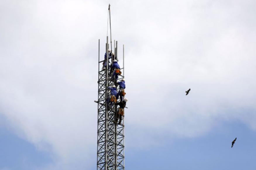 'Telecom towers kill 7mn birds in America every year'
