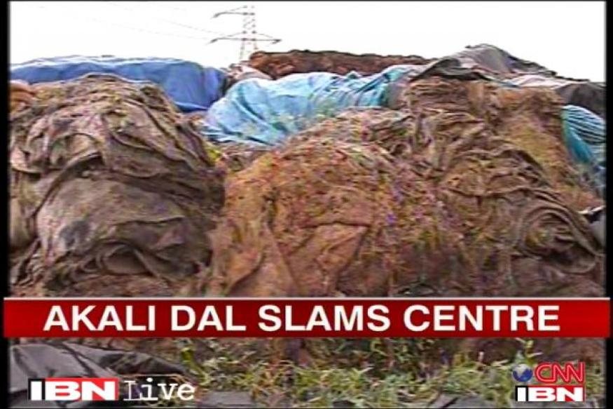 Punjab grain rotting: FCI to reply in court