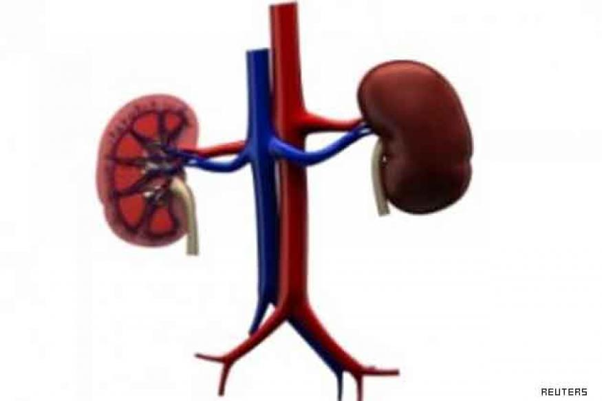 Bangalore: Kidney patients rue absence of donors