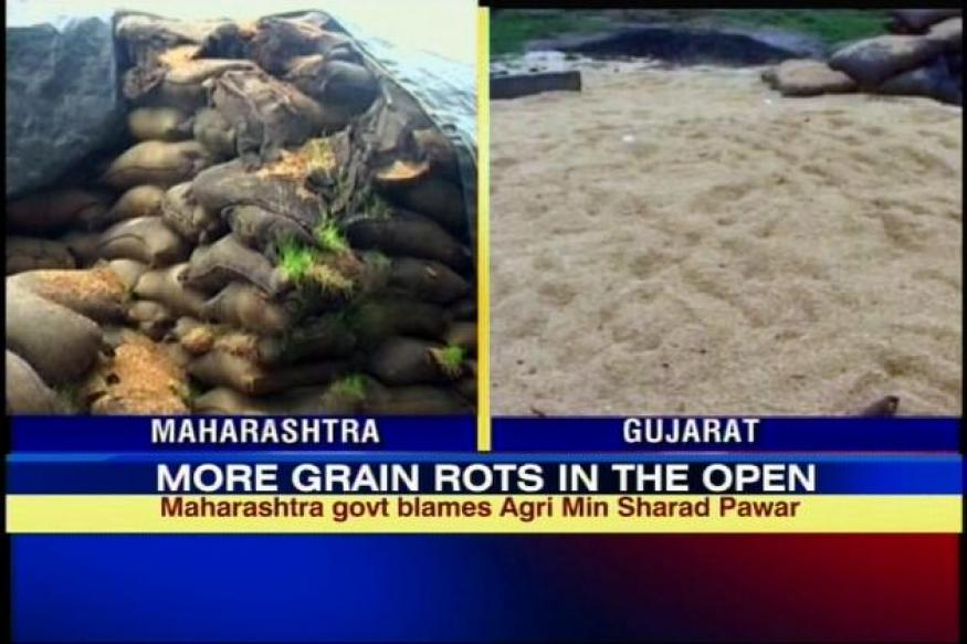 Gadhchiroli: Rs 250 cr worth of rice rots for 2 years