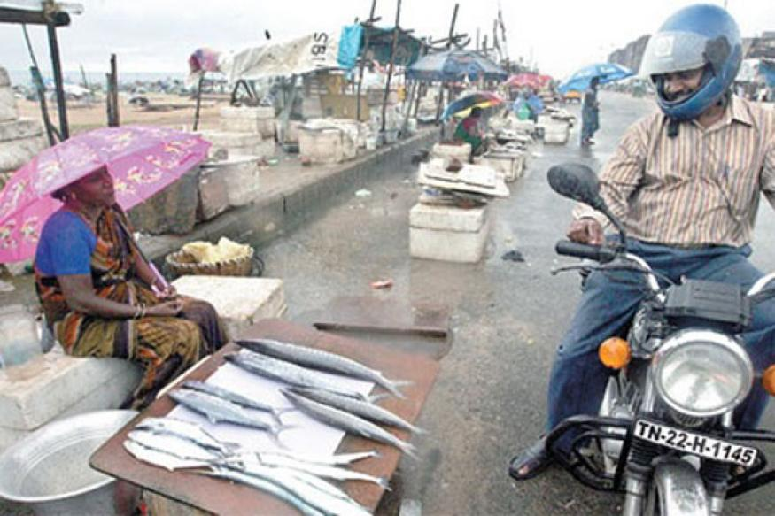 Chennai fish markets turn into 'silent zones'