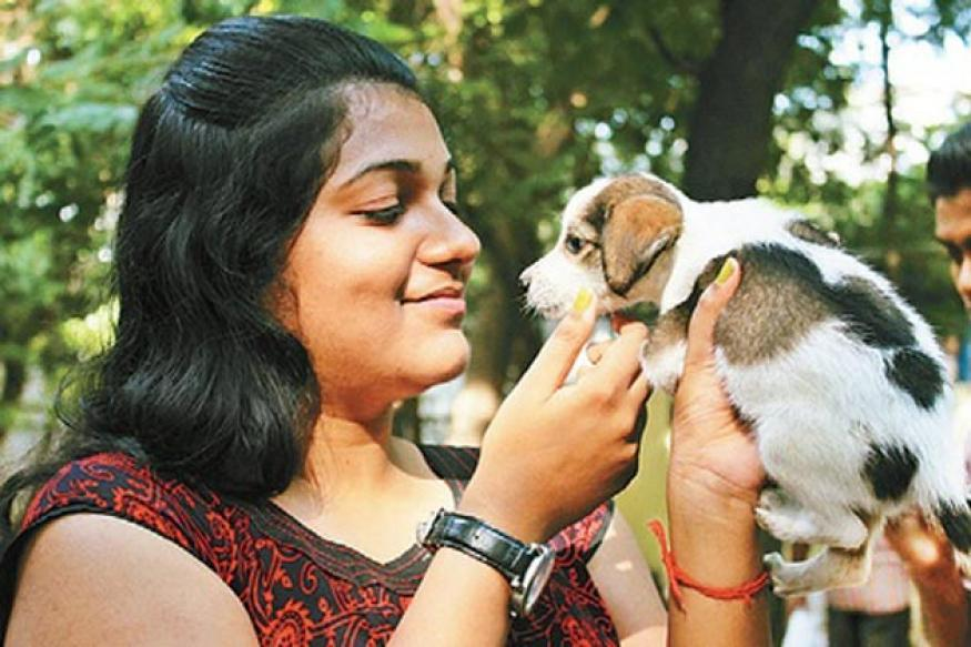 Chennai: Raising a 'paw' for dog adoption