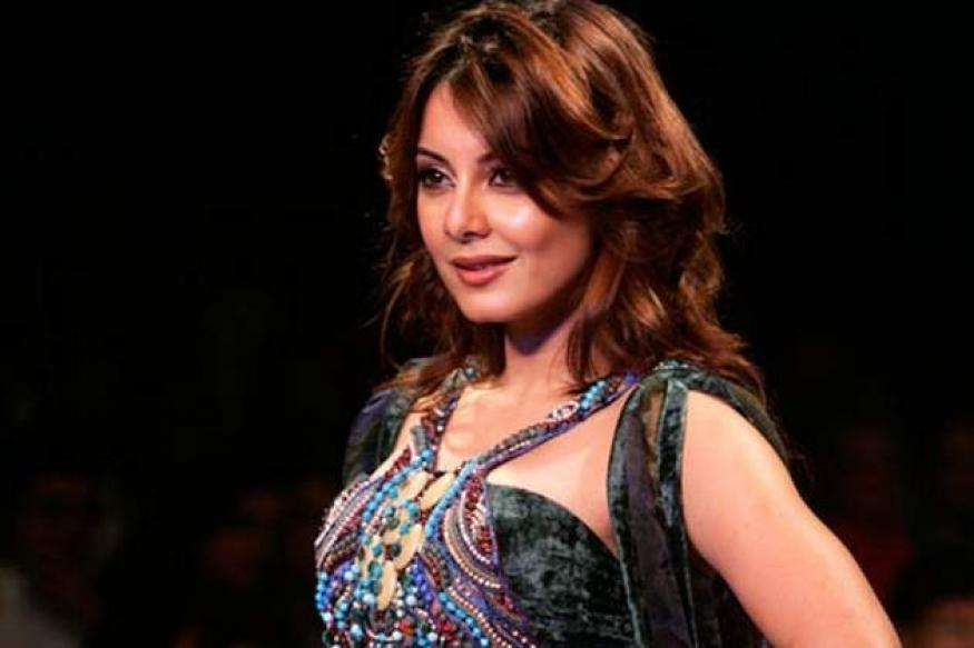 Would love to click Brad Pitt's pictures: Minissha
