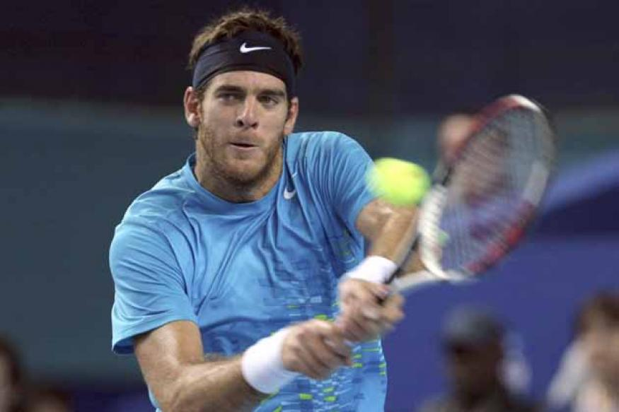 Del Potro beats Tipsarevic in ATP World Tour