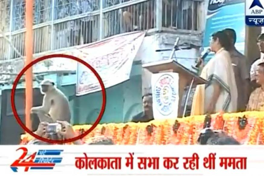 Mamata Banerjee chants mantra to shoo away monkey