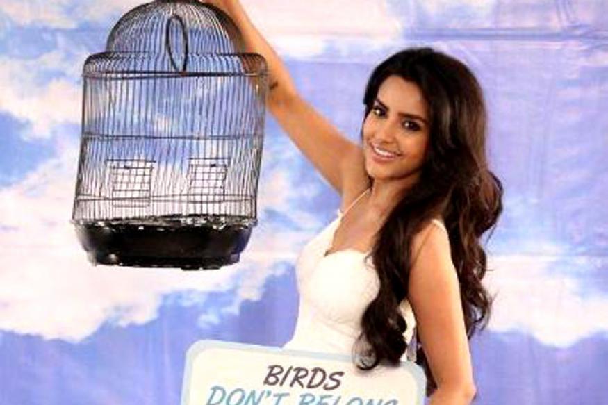 Priya Anand campaigns for PETA