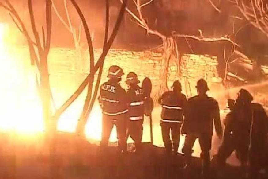 Mumbai: Massive fire in forest area behind Film City