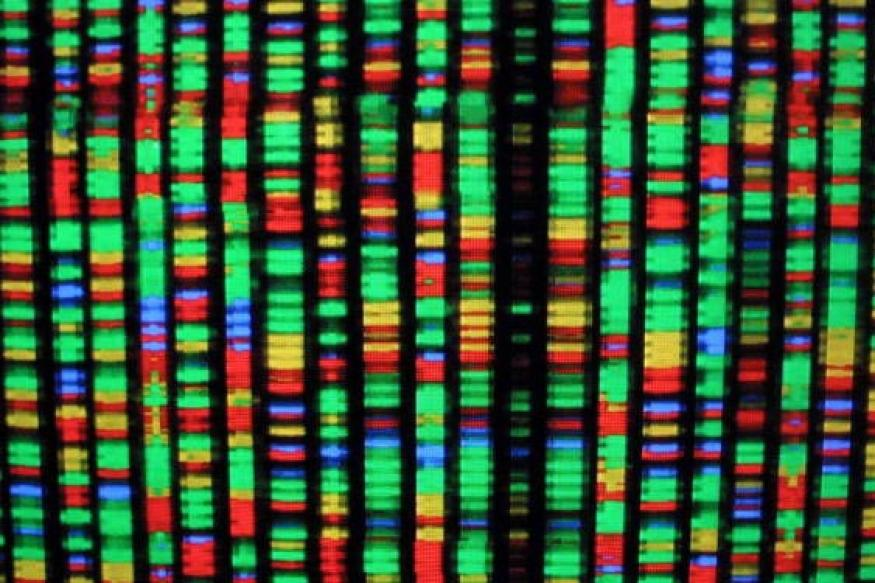 Can human genes be patented? US Supreme Court to decide