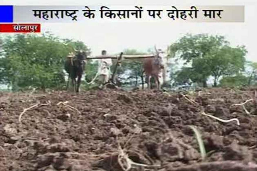 Maharashtra: After drought, farmers complain of poor seed quality