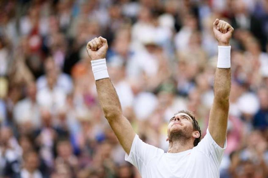 Juan Martin del Potro defeats David Ferrer to reach semi-finals