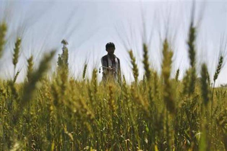 Cabinet approves amendments to Food Security Bill