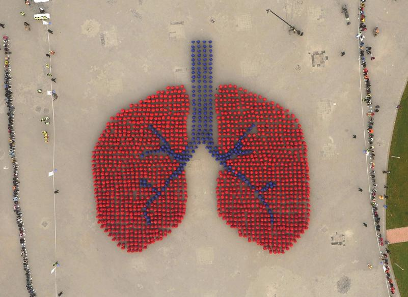 Air Pollution Ups The Risk Of Chronic Sinus Problems