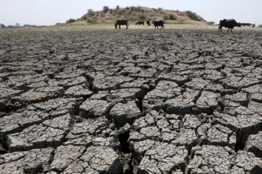 Drought Demons