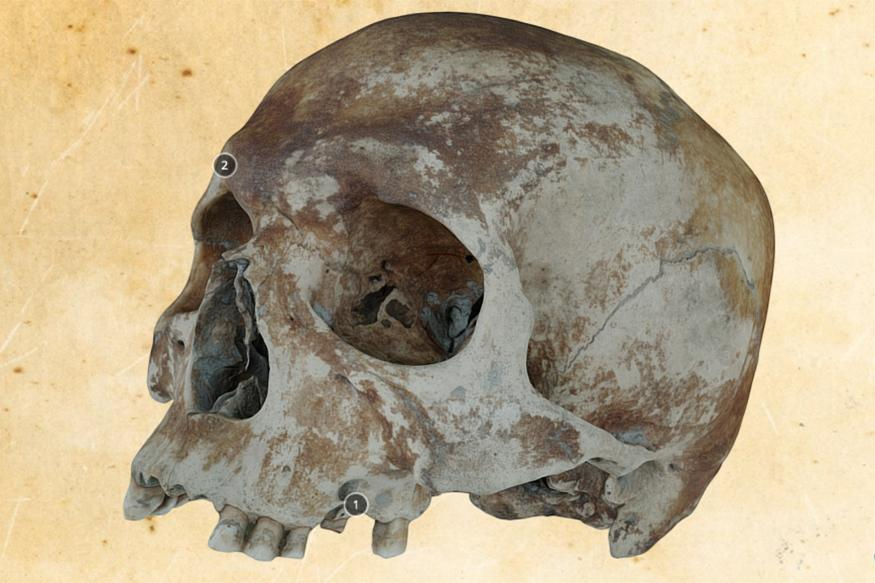 500 Year-Old Skull Goes Online in 3D as Part of Mary Rose Project